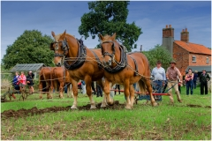 Ploughing at Gressinghall MIck Stainthorpe