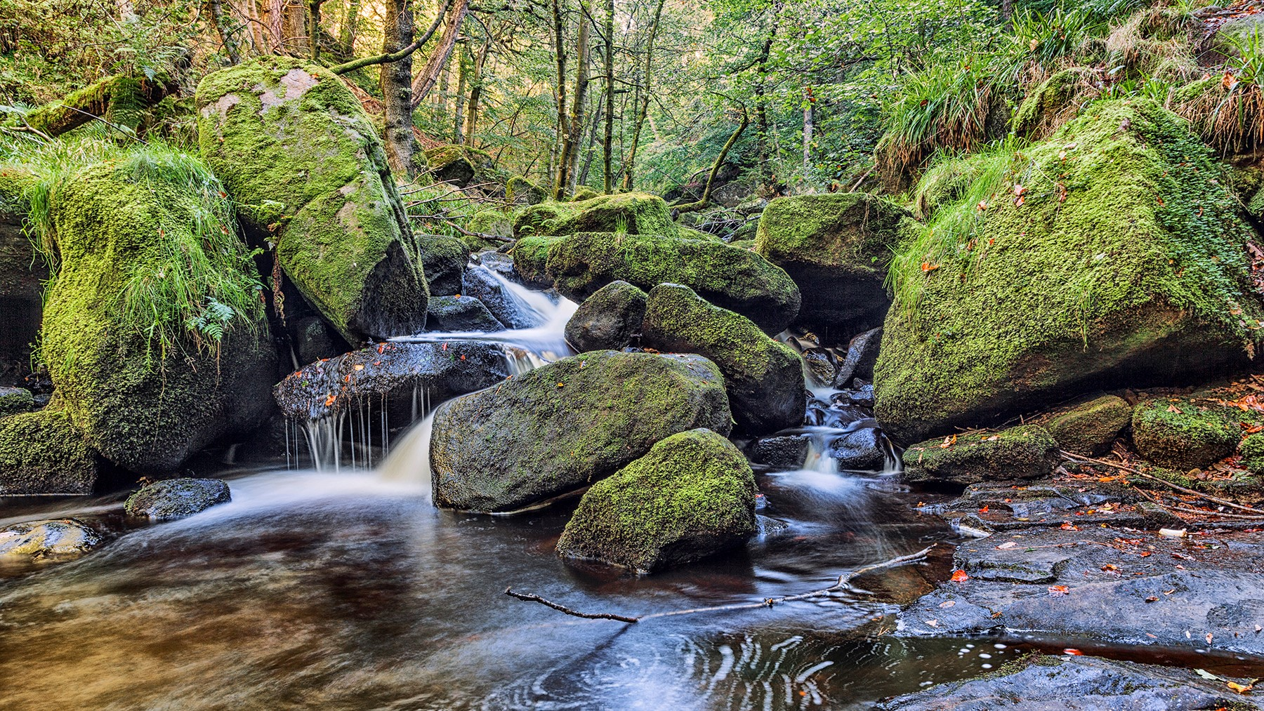 275 AG Open Good Morning Padley Gorge