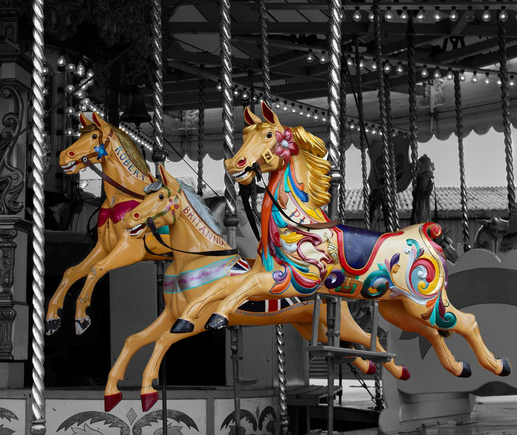 the-gallopers-by-tara-mayall