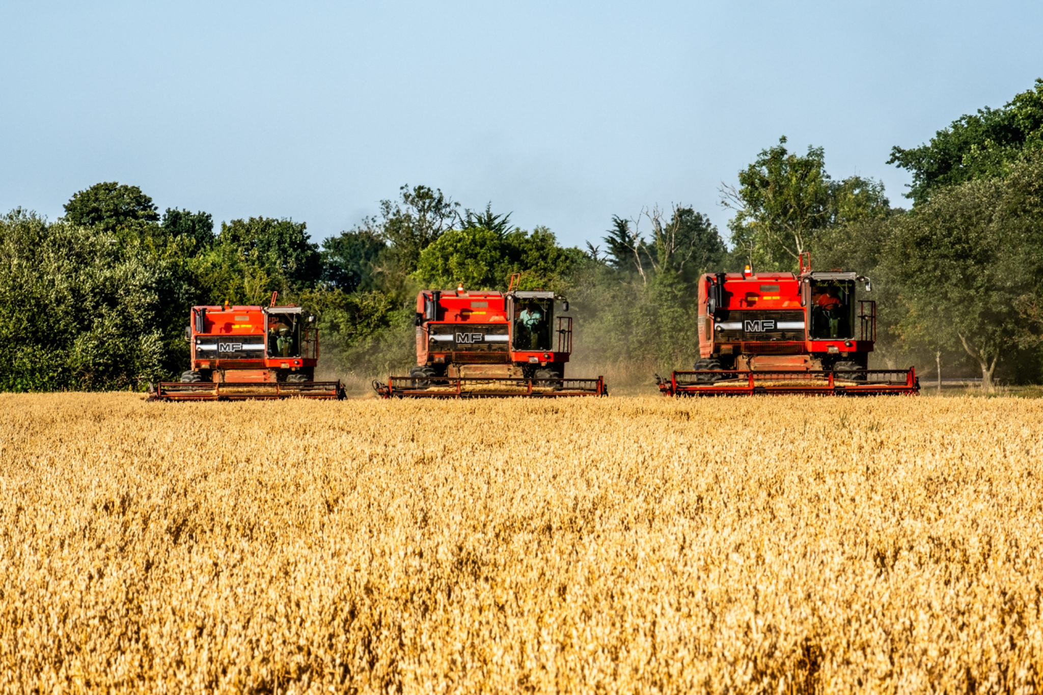 trio-of-vintage-combines-by-neal-trafankowski